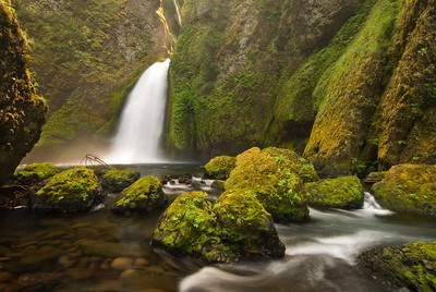 Wahclella Falls in the Columbia Gorge of Oregon