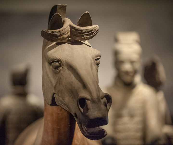 A beautiful display of four terracotta soldiers from the Qin Emperor's burial complex on loan from Xi'an, China to the Asian Art Museum (San Francisco, CA, US - 04/26/13, 2:53:58 PM)