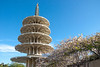 Cherry blossoms frame the pagoda in Japantown for the Cherry Blossom Festival (San Francisco, CA, US - 04/14/13, 6:00:15 PM)