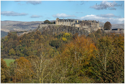 Stirling Castle from King's Park