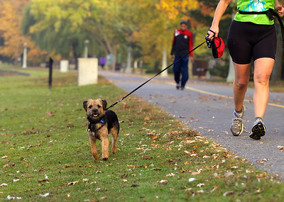 Getting his morning run in too!