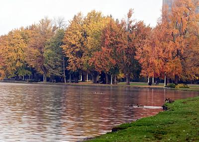 Around Dow's Lake