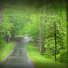 """""""Virginia Road""""<br /> Honorable Mention - Digital Projection<br /> Jeanne Connell"""
