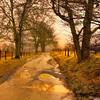 """Rain On Spark's Lane""<br /> 1st Place - Projected Images<br /> Anne Strickland"