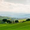 Lawrenton Road Tuscany