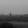 Kinderdijk Fields