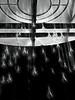 In a Distillary - Patricia Dortch