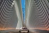 911 Memorial - Boris Datnow