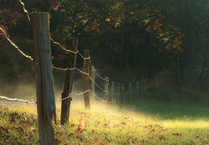 """""""Country Light""""<br /> Honorable Mention - Projected Images<br /> Ann Strickland"""
