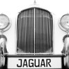 """JAG""<br /> 3rd Place - Black & White Prints<br /> Ron Clemmons"