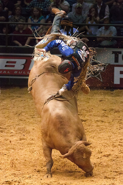 """""""Bull Rider""""<br /> Honorable Mention - Digital Projection<br /> Terry Yarbrough"""