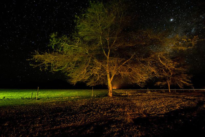 """African Night"