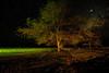 """African Night""<br /> 1st Place - Digital Projection<br /> Steve Grunfeld"