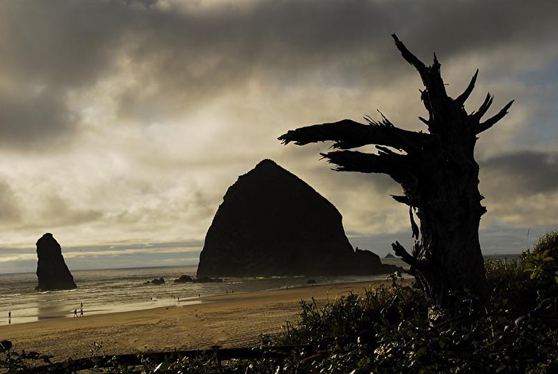 """""""Oregon Coast""""<br /> 2nd Place - Color Prints<br /> Graham Bostic"""