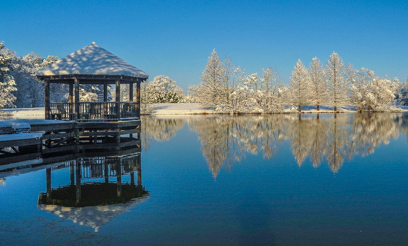 Just Winter On The Pond