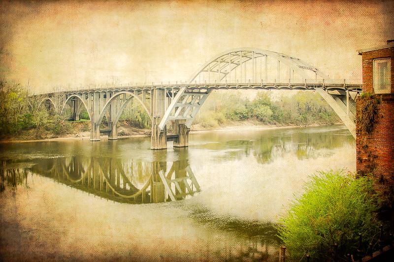 Selma Reflection