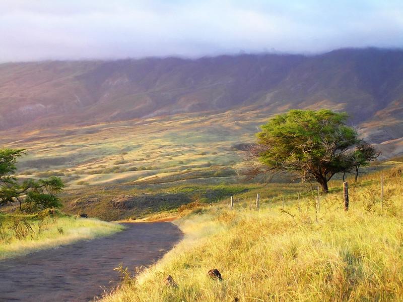 Beyond the Road to Hana