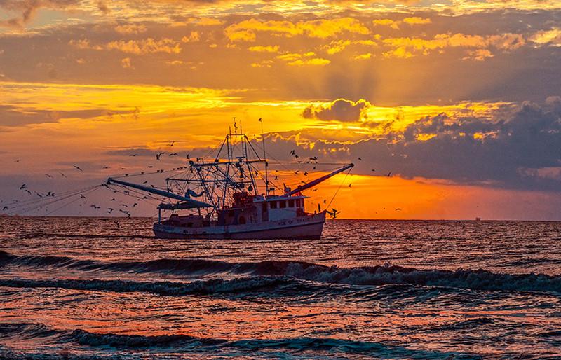 Shrimping at Sunrise