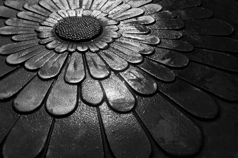 Sunflower Lid