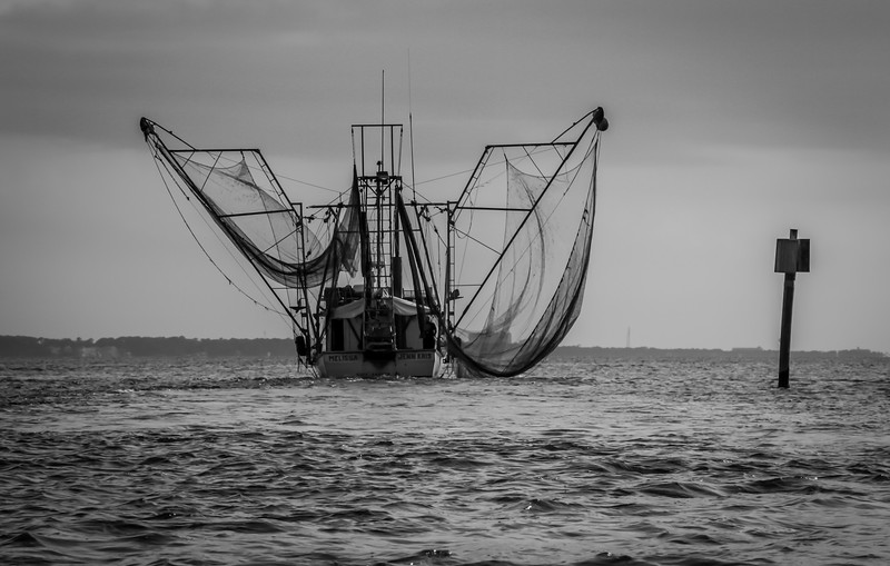 Bon Secour Shrimper