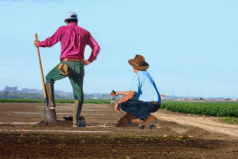 Salinas Farmers