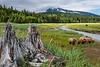 Silver Salmon Creek (Alaska)