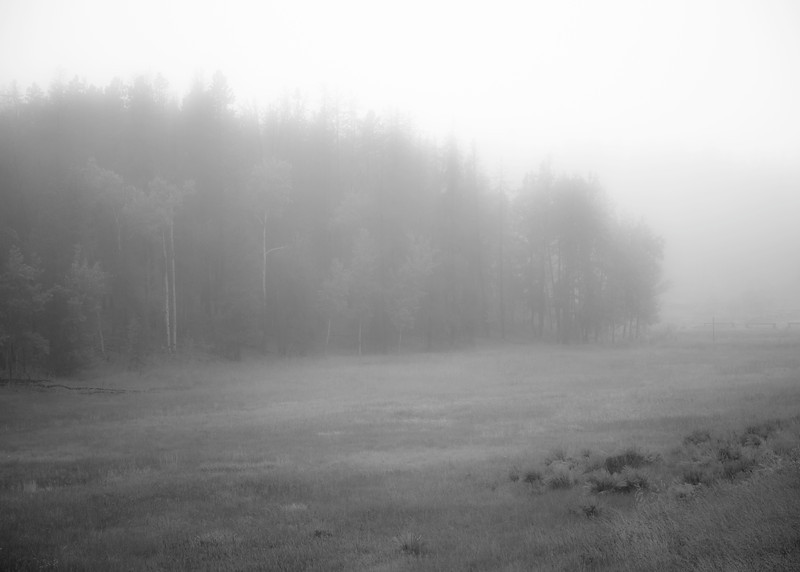 September 13th, 2013 - More fog shots.<br /> <br /> We don't get fog this dense in this area very often. The storm that's flooding Colorado has hit us pretty hard as well and this is part of that storm. Hopefully everyone in the heart of that storm is doing well! Our thoughts are with you!