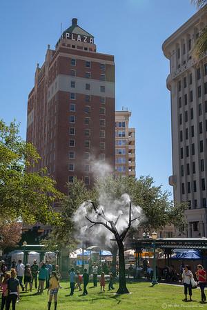 Misting treee in downtown El Paso during Worldwide PhotoWalk 2012