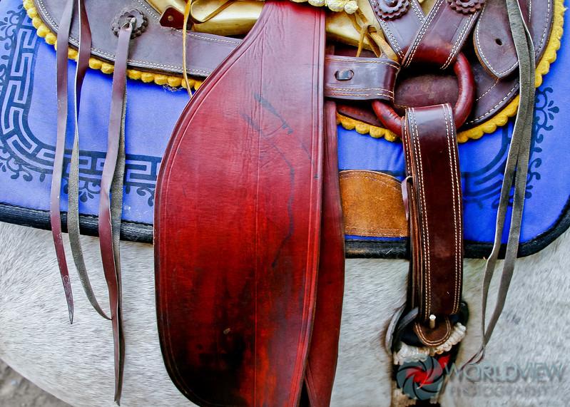 Styled Saddle