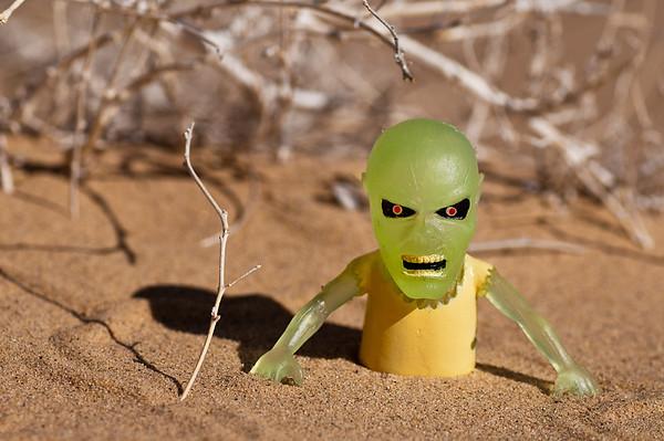 Monster Guy in Mojave National Monument