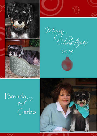 Brenda holiday card 2009 low