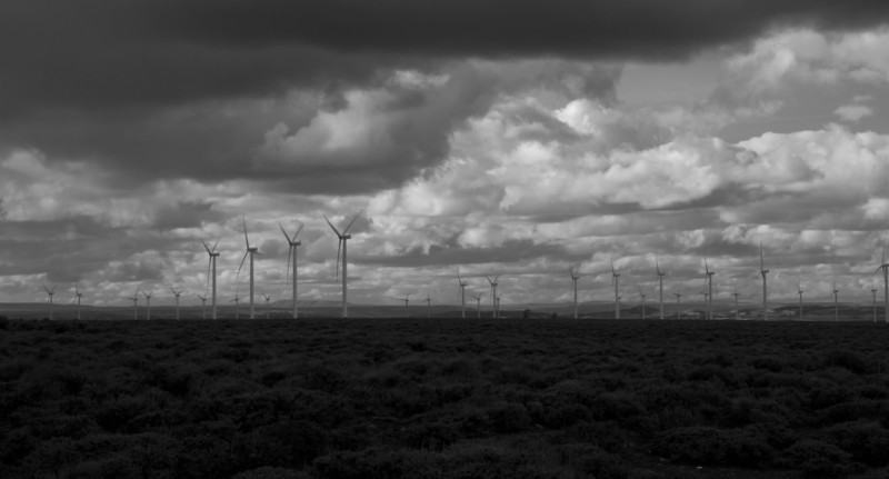 May 12, 2012<br /> <br /> Windmills, windmills, everywhere! <br /> I liked it better in B&W.<br /> <br /> Hope you all have a great Saturday!