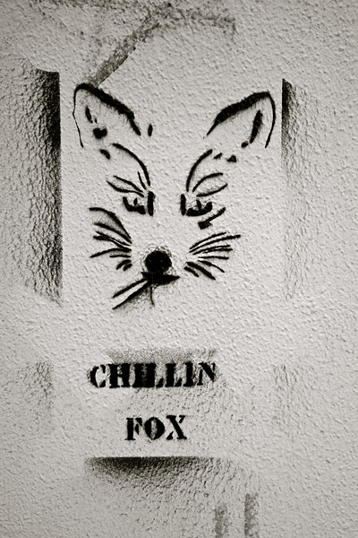 Chillin Fox... Heraklion, Crete