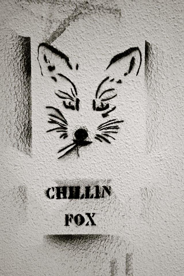 Chillin Fox... Heraklion, Crete
