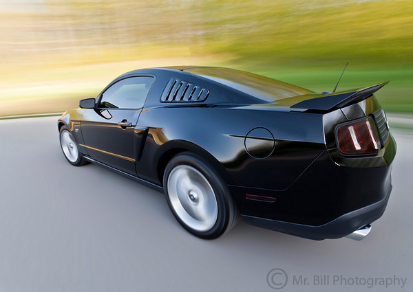 Car rig of 2010 Mustang Gt