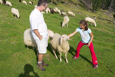Julia-Tabea isn't so sure about petting this sheep.