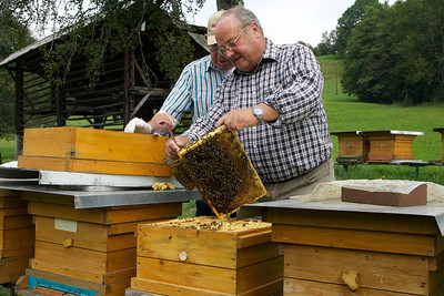 Honey is a significant micro-industry in this part of Austria and Herman keeps his hives at Plic.  A government official came to inspect the health of Herman's bees as there is a sickness in the area that they are trying to control.  Fortunately Herman's bees are healthy.