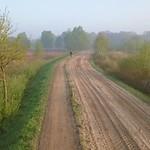 Wierdenseveld