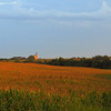 Cathedral in the Cornfields, Gage Co , NE (4)