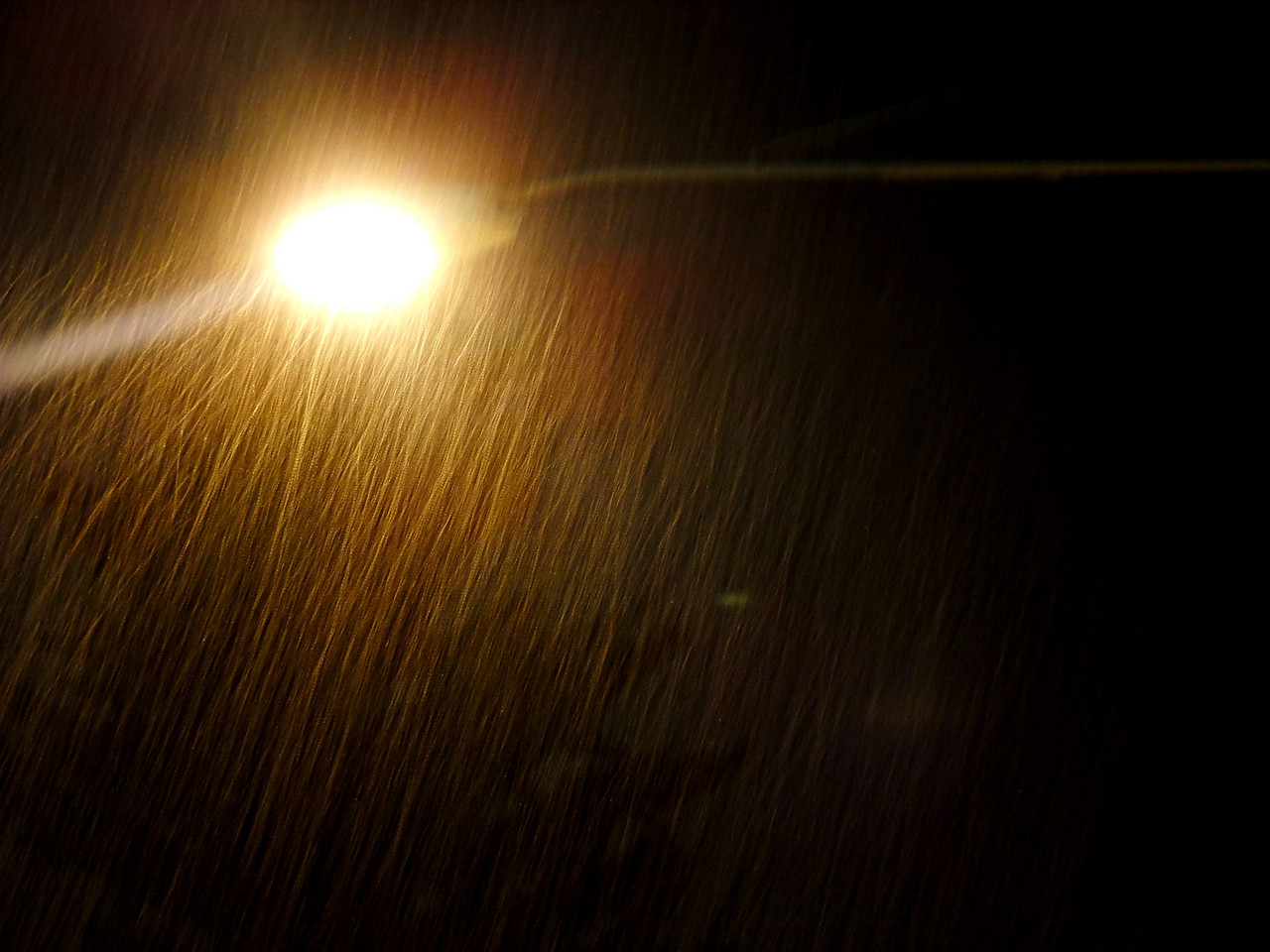 Nice random photo to kick off this gallery - a snowstorm at four in the morning.<br />                                         January 21, 2010