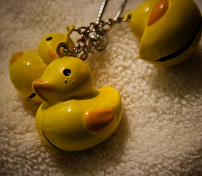 March 11th, 2010<br /> <br /> Thursdays are always a crazy day, so this picture comes compliments of the kitchen. I have this thing for ducks - I like them... a lot. So for birthdays and holidays I always get these really cool duck trinkets. This is one of my favorites - its a set of duck bells.<br /> <br /> Happy Thursday!