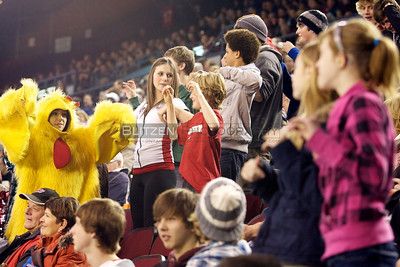 The chicken dance is interestingly a favorite of fans of all ages.