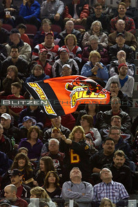 One of the many Bulls fans celebrating the first Bulls goal.
