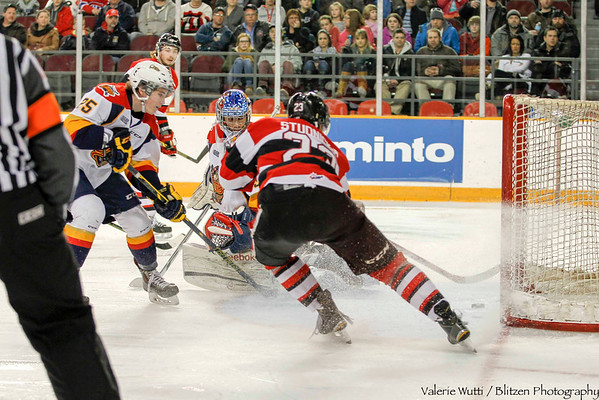 Hardest Working 67's:  Sam Studnicka with Ottawa's second goal.