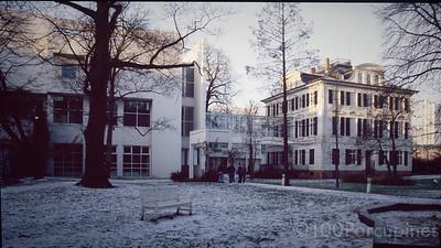 Frankfurt. Snow and Galleries