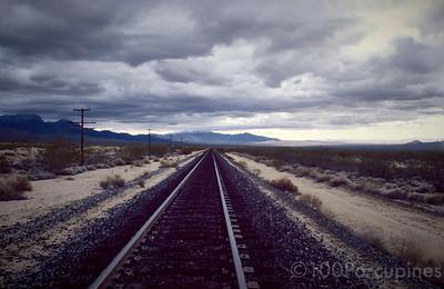 Nevada Desert Tracks