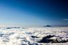Adams Prominence
