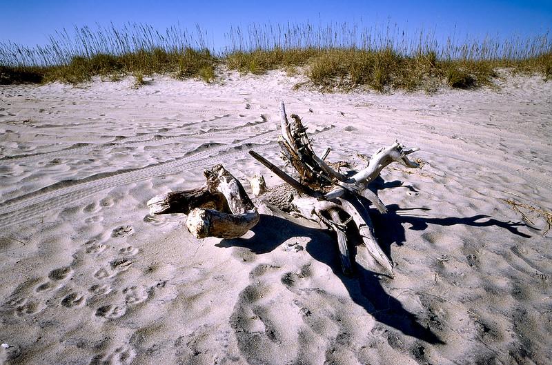 OBX 1997 - Driftwood