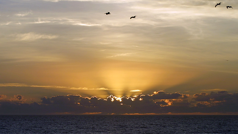 Sunrise - November 25, 2001