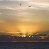 Sunrise - 2001